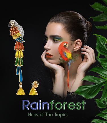 Rainforest Colelction